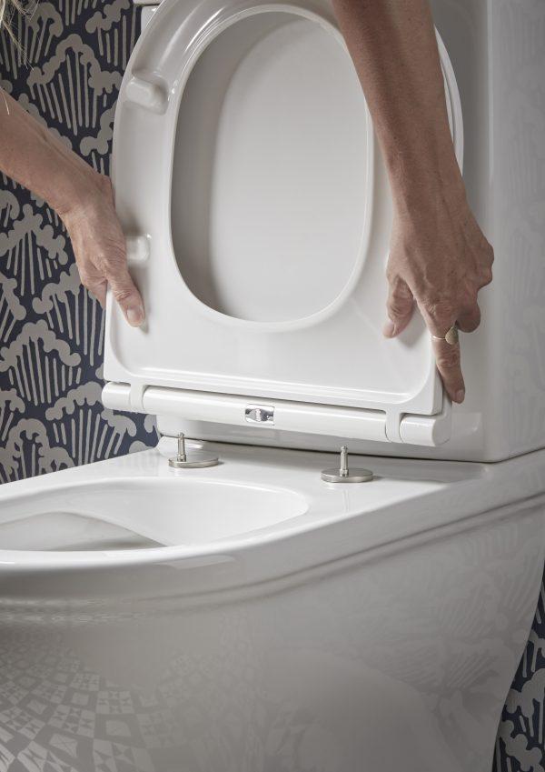 Lansdwon quick release toilet seat detail v1